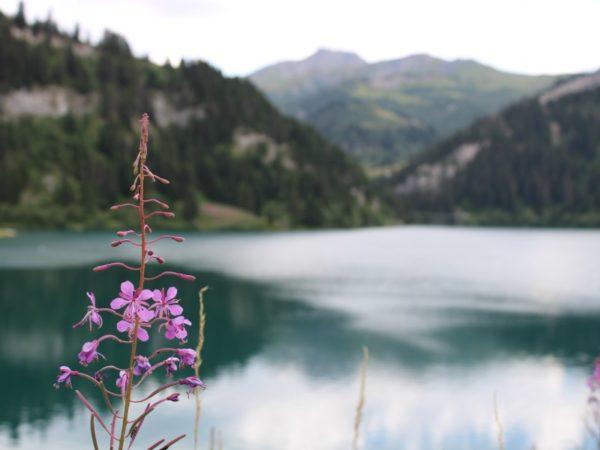 Lac St Guérin
